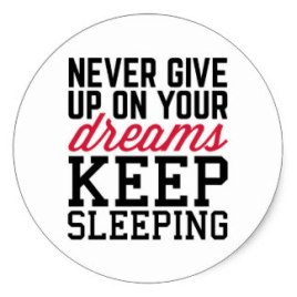 never_give_up_dreams_funny_quote_classic_round_sticker-r16c4bc96376d415daf39ad71abe1ad38_v9wth_8byvr_324